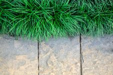 Free Grass Frame  On Stone Block Background Stock Images - 28343084
