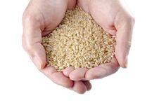 Free Handful Of Brown Rice 2 Stock Photography - 28345822