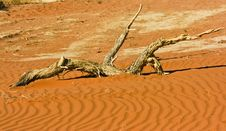 Free Sand Dune Royalty Free Stock Photography - 28353017