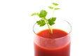 Free Freshly Blended Tomato Juice Stock Photo - 28362800
