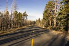 Free Road To Bryce Canyon Stock Images - 28363194