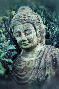 Free Budda Royalty Free Stock Photography - 28364927