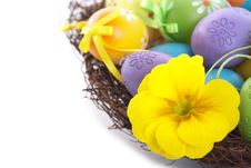 Free Yellow Flower And Colorful Easter Royalty Free Stock Image - 28369706