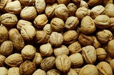 Free Heap Of Walnuts Stock Photo - 28371150