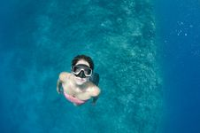 Free Woman Free Diving On A Coral Reef Royalty Free Stock Photos - 28373238
