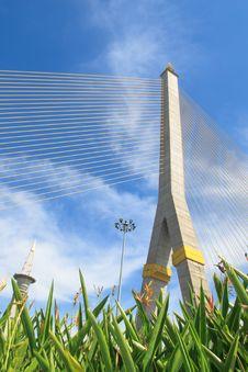 Free Rama VIII Bridge Stock Photo - 28374990