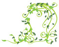 Free Green Floral Royalty Free Stock Image - 28386186
