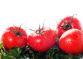 Free Ripe Tomatoes In Drops Royalty Free Stock Photography - 28389407
