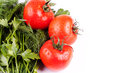 Free Ripe Tomatoes In Drops Royalty Free Stock Photography - 28389417