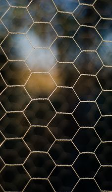 Free Mesh Stock Photography - 28380662