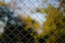 Free Mesh Stock Images - 28380664