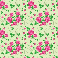 Vector Seamless Pattern With Rose Royalty Free Stock Image