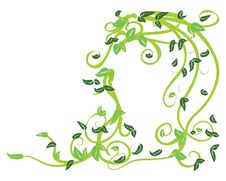 Green Floral Royalty Free Stock Image