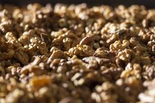 Free Nutmeat Royalty Free Stock Image - 28387036