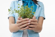 Hands Presenting Plants Stock Images
