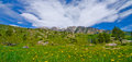 Free Grass Pasture In The San Juan Mountains In Colorado Royalty Free Stock Photos - 28394418