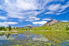Beaver Lagoon In The San Juan Mountains In Colorado Stock Images