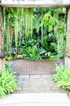 Free Walk Way Entrance To Fern Garden Royalty Free Stock Images - 28395219