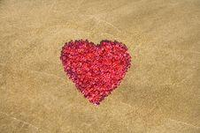 Free Heart Shape Royalty Free Stock Photography - 28396107