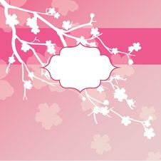 Free Sakura Flowers Card Stock Photo - 28397010