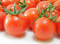 Free Fresh Tomatoes Stock Photography - 2849192