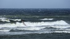 Free Windsurfer Fighting With Waves Royalty Free Stock Photo - 2840595
