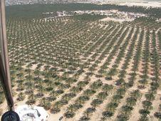 Free Air Photo From Tunisia Stock Photos - 2844083
