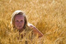 Pretty Woman In Wheat Field Stock Photography