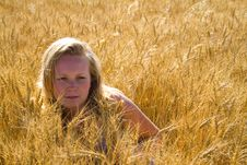 Free Pretty Woman In Wheat Field Royalty Free Stock Photos - 2844688
