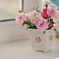 Free Autumn Bouquet Royalty Free Stock Image - 28400636