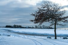 Free Winter Landscape - Tree In The Snow Royalty Free Stock Image - 28407586