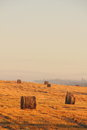 Free Slanted Field. Hay Piles. Stock Photography - 28412192