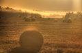 Free Dawn. Fog. Slanted Field. Stock Photos - 28412293