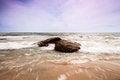 Free Sea Whit Stones Royalty Free Stock Photo - 28419775