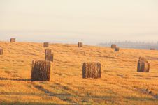 Free Slanted Field. Hay Piles. Stock Photography - 28412162