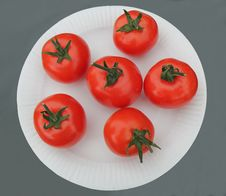 Free Red Tomatoes. Royalty Free Stock Photo - 28416555