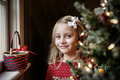 Free Christmas Morning Stock Images - 28422764