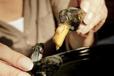 Free Eating Mussels Stock Photography - 28420632