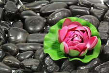 Free Black Stones Stock Images - 28428054