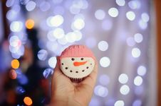 Free Christmas Fruitcake Stock Photo - 28430010