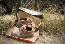 Worn Hiking Boots With Box In Grassland Stock Images