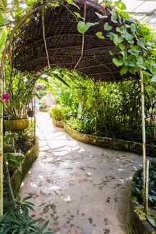 Free Tunnel Shape Walk Way In Butterfly Garden Stock Image - 28439771