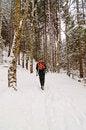 Free Man Hiking Royalty Free Stock Photo - 28441985