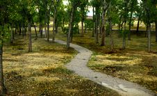 Free Path Through The Park Stock Images - 28440094