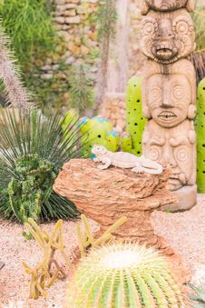 Dragon Lizard Sculpture In Desert Garden Stock Image