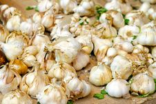 Free Garlic Stock Photos - 28440413