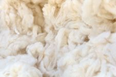 Free Cotton Wool Background Stock Photography - 28440762