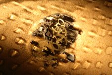 Free Gears In Sand Royalty Free Stock Photography - 28443957