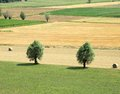 Free Countryside Stock Photography - 28452362