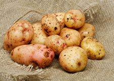 Free Raw Potato Stock Images - 28459274